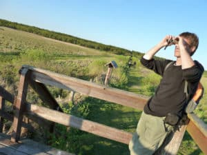BirdWatchingWetlands