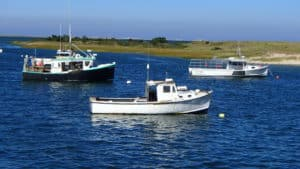 Moored Fishing Boats Cape Cod